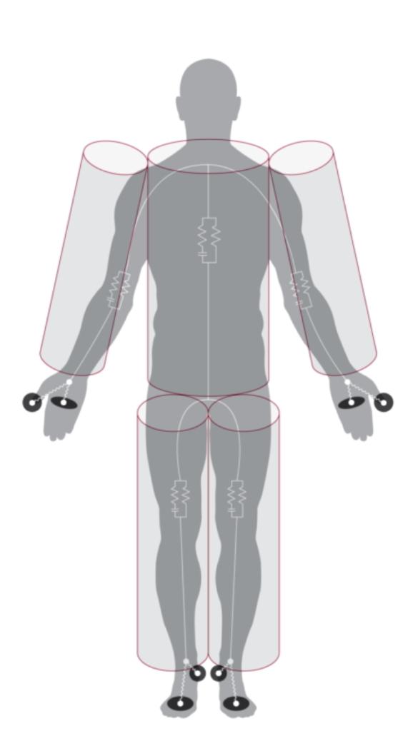 InBody kehon mittaus viidessä osassa
